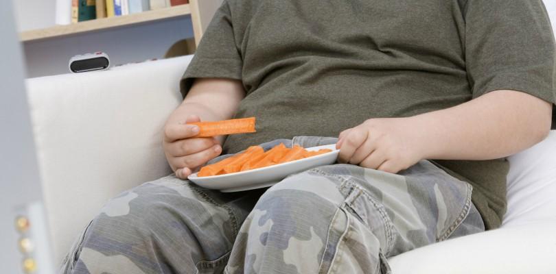 obese kid - body fat