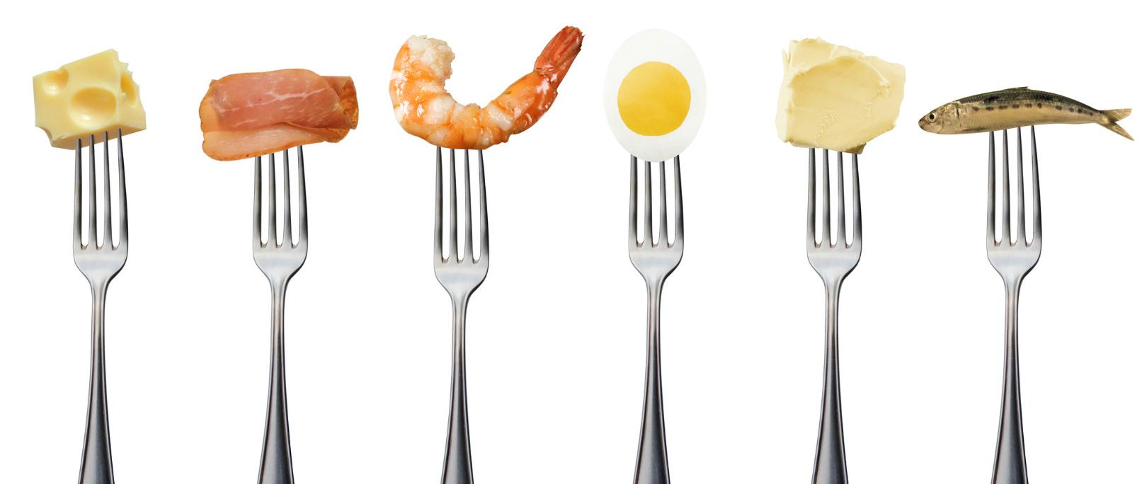 protein in blood due to diet