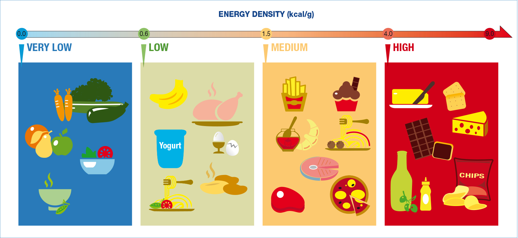 low and high energy density foods to fine-tune your nutrition