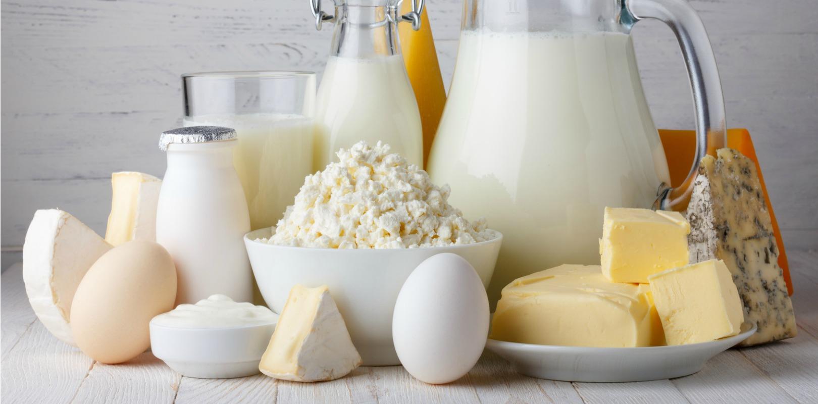 Milk and yogurt may increase vitamin B12 intake - Yogurt in Nutrition