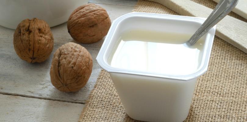 whey-yogurt