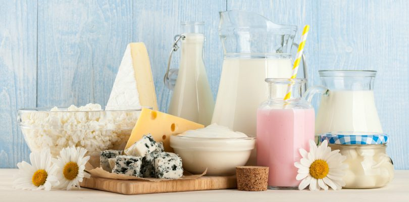 What is the role of lactose?