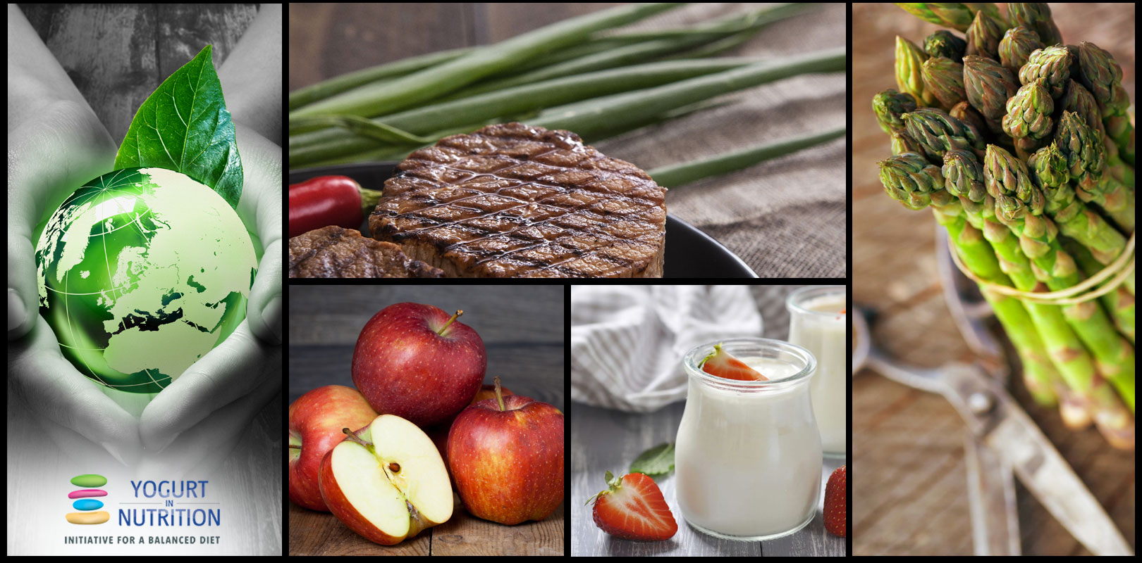 can a healthy diet be sustainable with meat and dairy