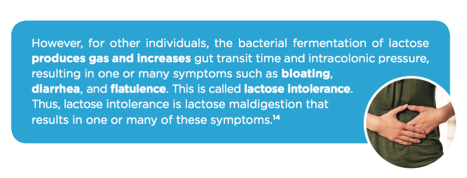 digest-lactose-symptoms-fermentation-intolerance