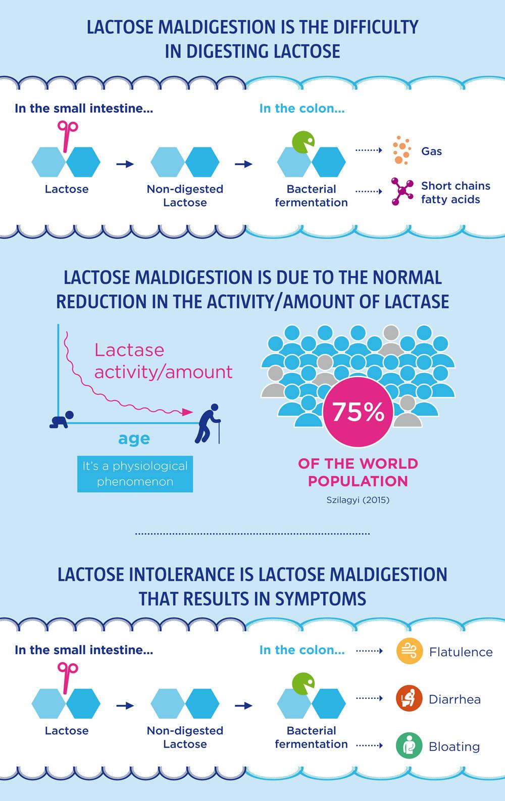 infographic-lactose-wgo-2