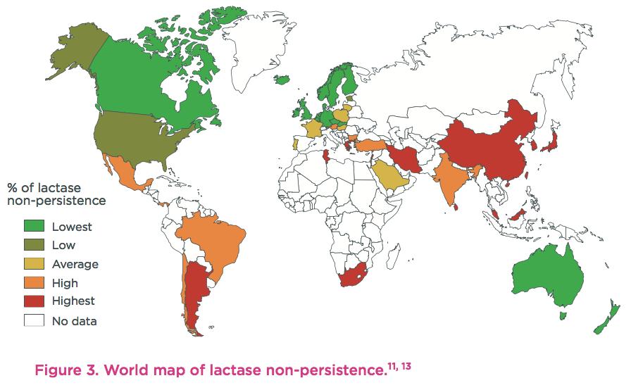lactase-persistence-world