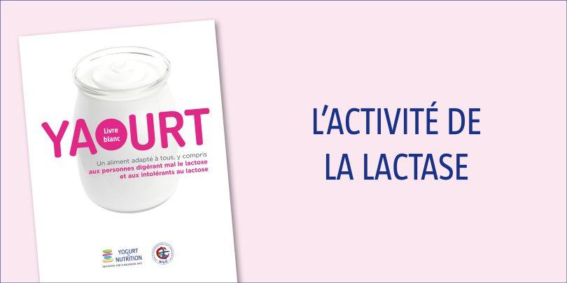 lactivite-de-la-lactase