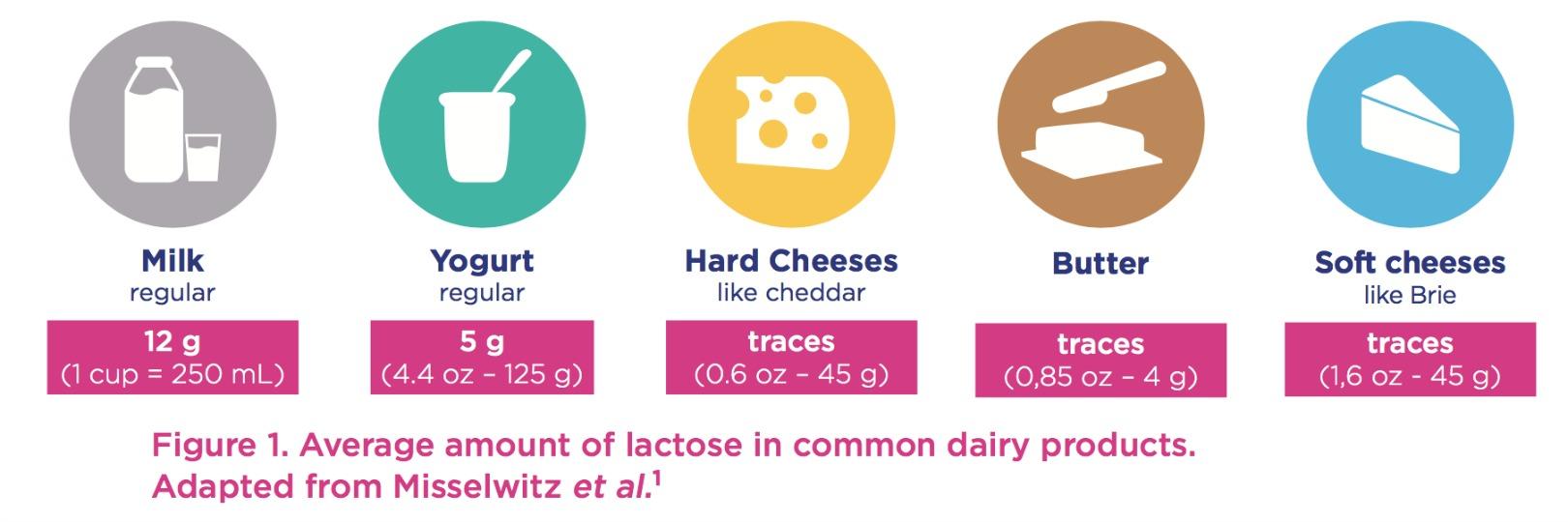 lactose-wgo-dairy-yogurt