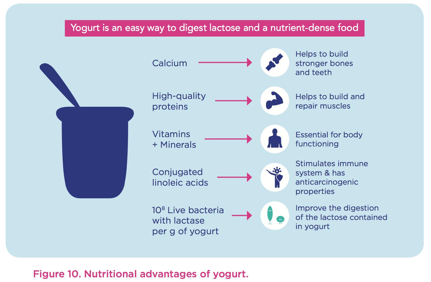 nutrient-dense-yogurt