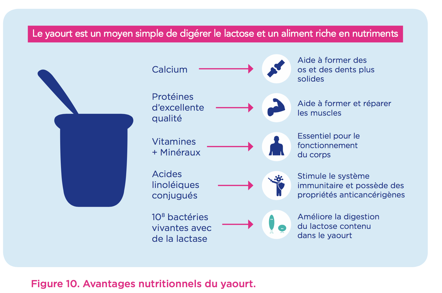 nutriment-yaourt