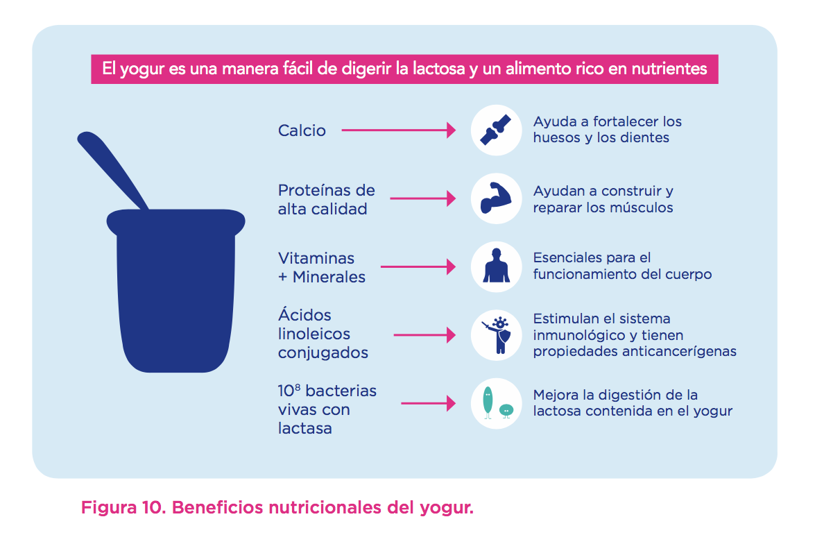 yogur-beneficios-nutricionales