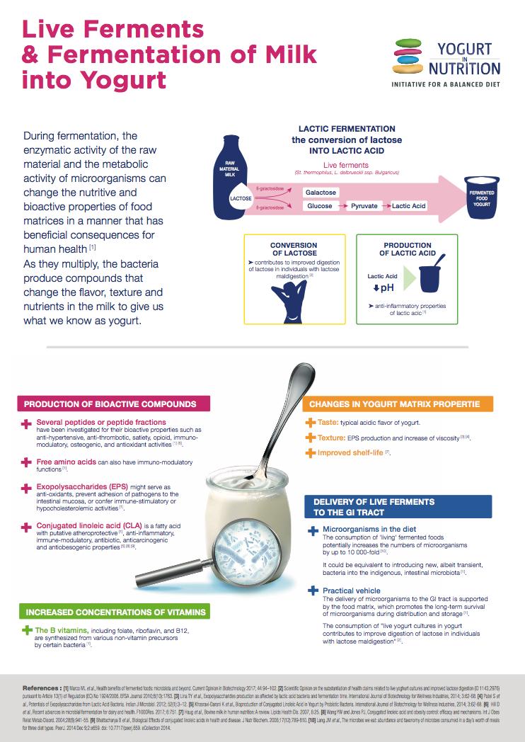 yogurt-fermentation-benefits