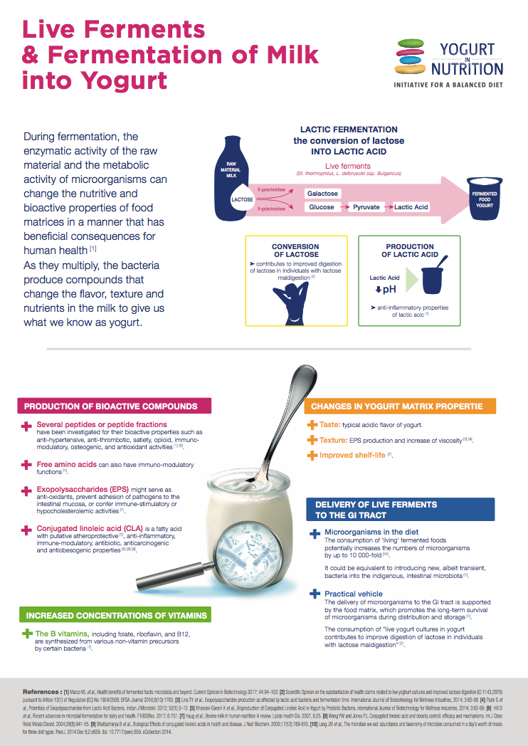 Yogurt Production