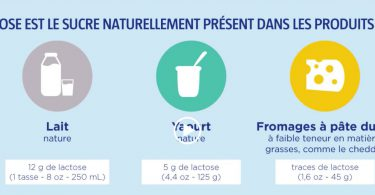 intolerance-lactose-yaourt-digestion