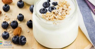 antioxidant potential of yogurt