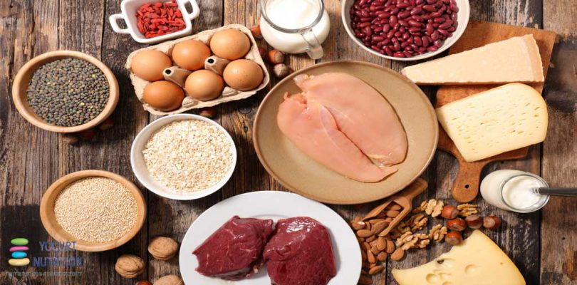 protein-rich foods to help protect you against type 2 diabetes