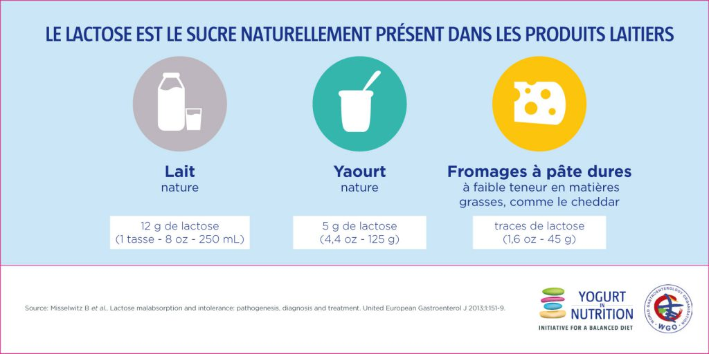 Le lactose un sure naturellement présent dans les produits laitiers