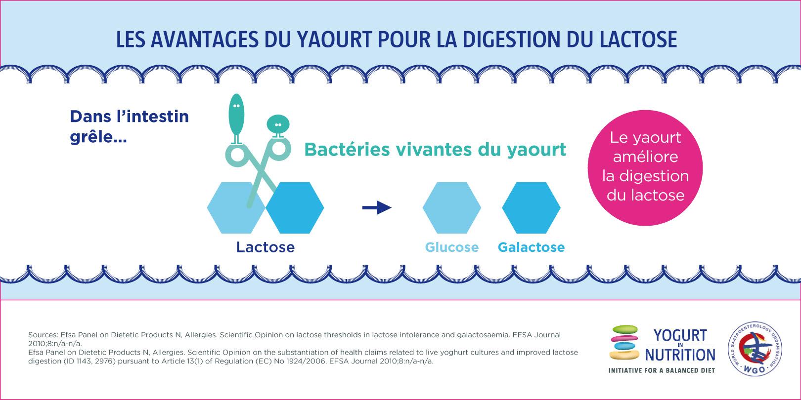 avantage du yaourt dans la digestion du lactose