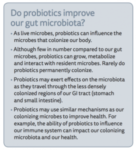 do probiotics improve our gut microbiota?