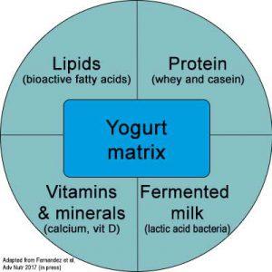 Yogurt food matrix combines lipids, proteins, vitamins, minerals and fermented milk
