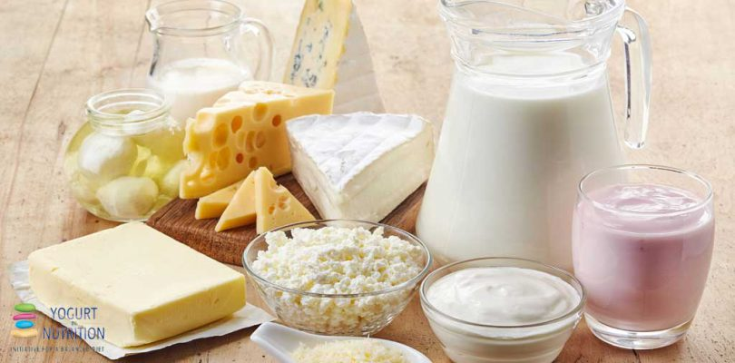 Preventing cardiometabolic disease: new insights into the role of fermented dairy foods