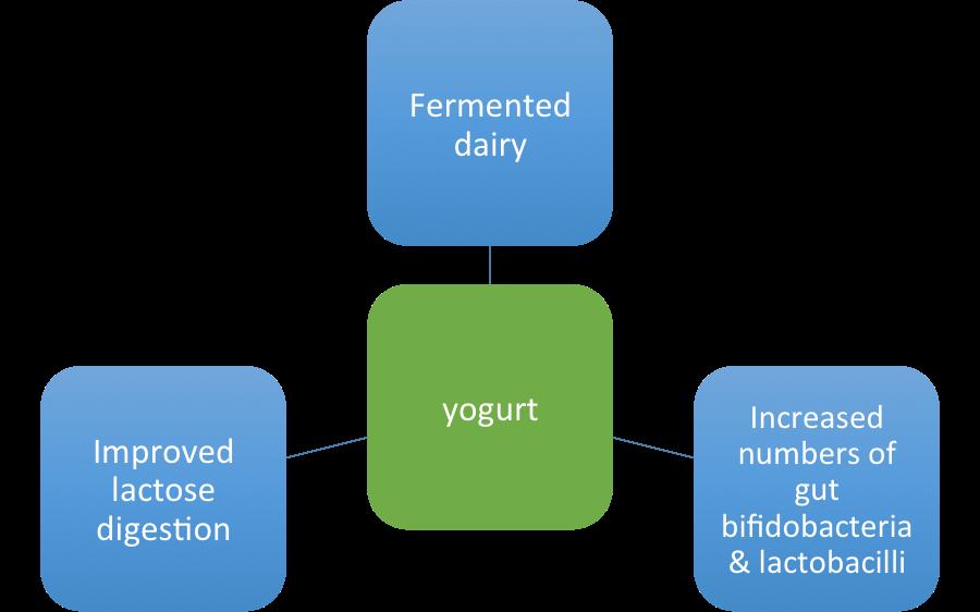 hutkins fermentation benefits nutrition 2018 boston yogurt