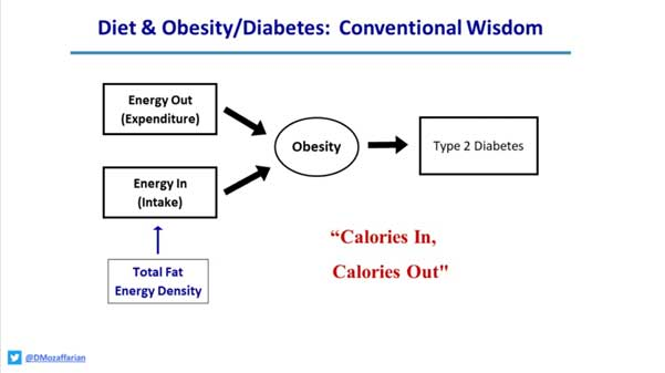 diet & obesity/diabetes: conventional wisdom by d mozaffarian