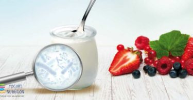 Yogurt bacteria and gut health