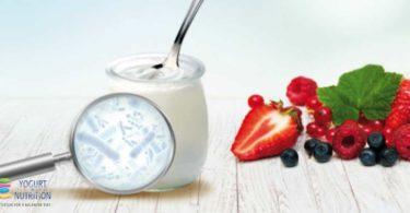 Yogurt bacteria and gut health
