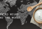 YINI - fermented milks of the world - what is greek yogurt