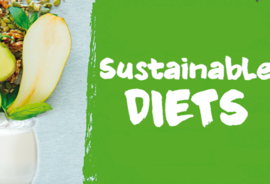 YINI Symposium Sustainable diets - the conference in synthesis