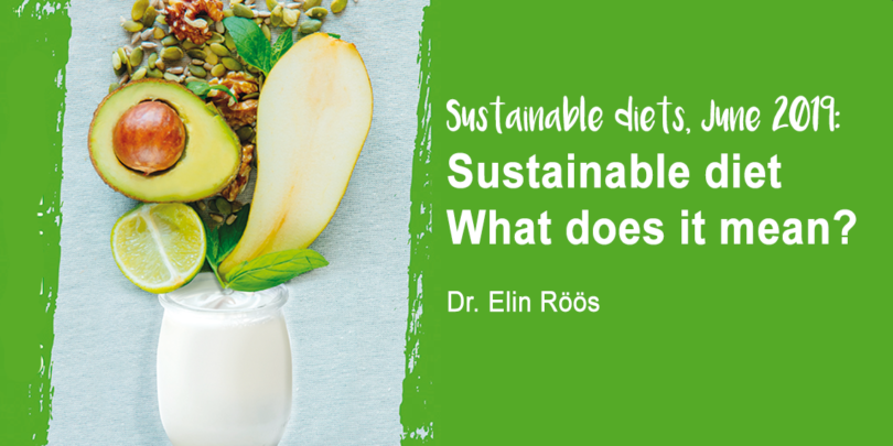 Sustainable diet - what does it mean by Dr Elin Roos - YINI