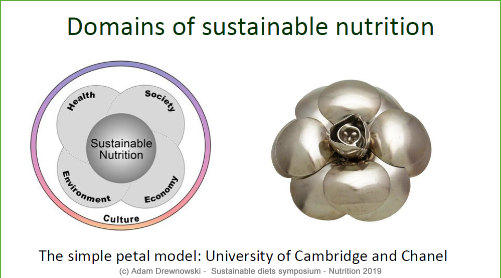 "YIN Symposium ""Sustainable Diets"" A. Drewnowski - the simple petal model"