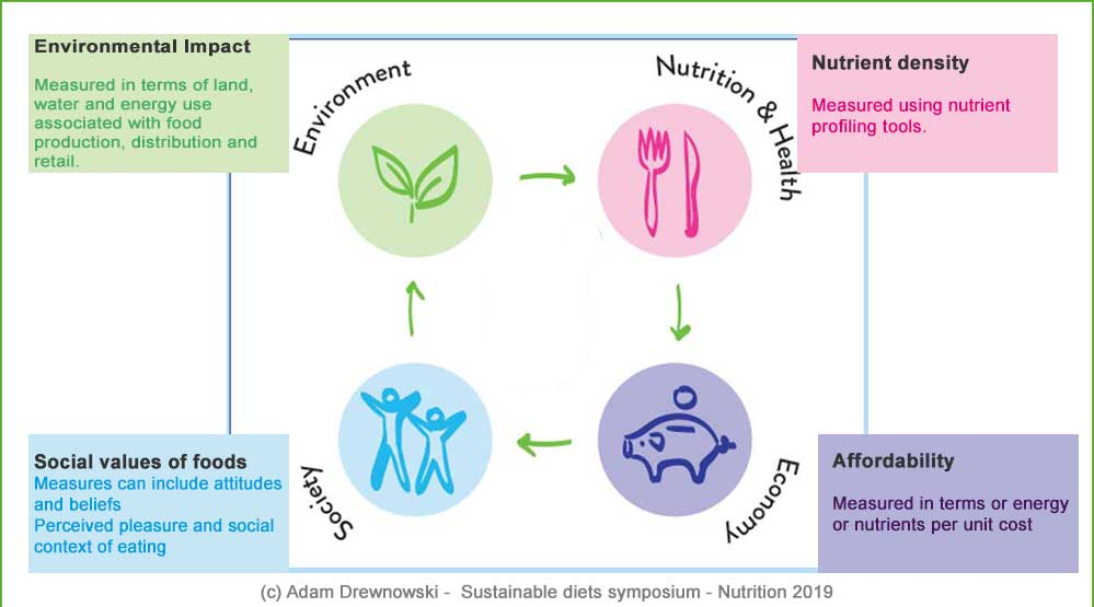 "YIN Symposium ""Sustainable Diets"" A. Drewnowski -4 dimensions of Sustainable diets"