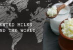 YINI - Fermented milk of the world - What is Kefir