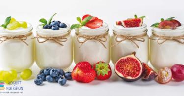 Yogurt, more than the sum of its parts - YINI proceedings