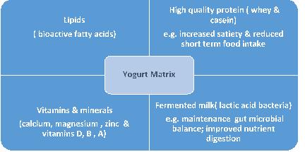 YINI - The yogurt food matrix