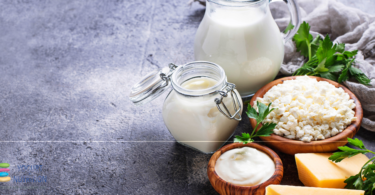 Is there an incidence of dairy foods on diabetes and mortality? 3 new investigations - YINI