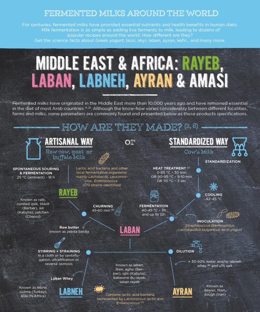 Fermented milk of the world: rayeb, laban - part 1