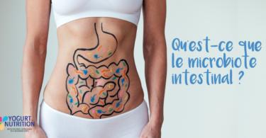 Qu'est ce que le microbiote intestinal ? YINI