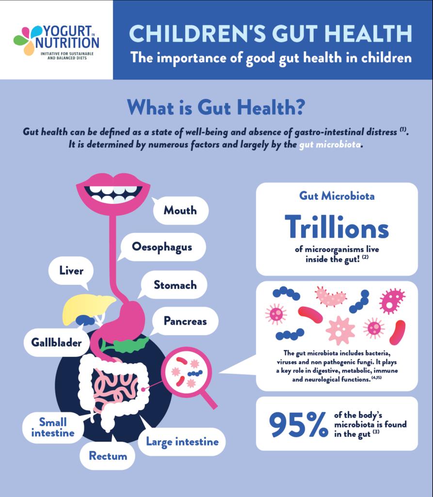 Children gut health infographic ENG part 1 - yogurt in nutrition
